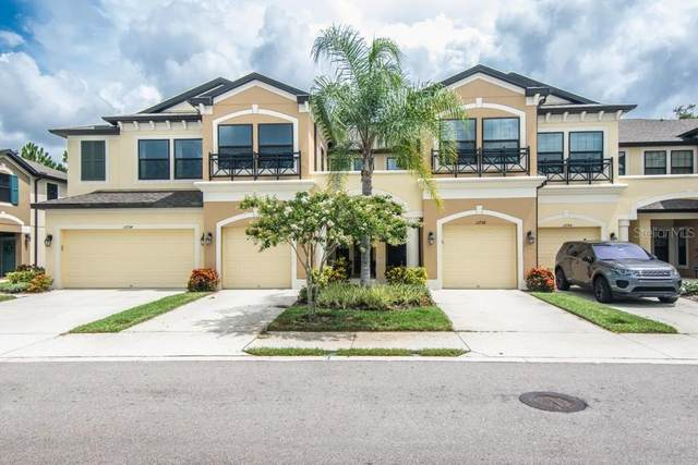 11738 Crowned Sparrow Lane, Tampa, FL 33626 (MLS #T3252904) :: Medway Realty