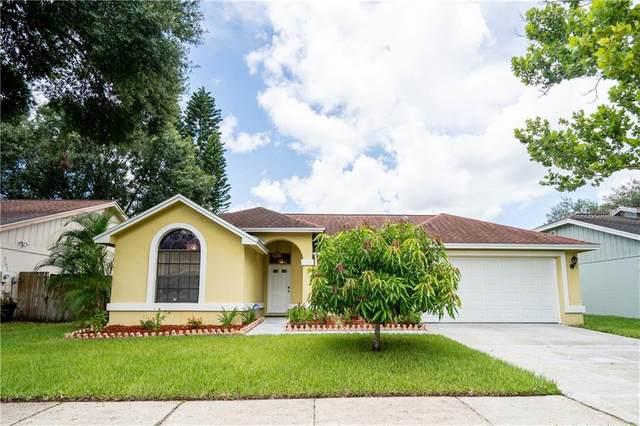 13306 Kearney Way, Tampa, FL 33626 (MLS #T3252936) :: Medway Realty