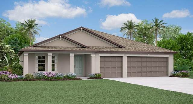 1605 Harvest Amber Place, Ruskin, FL 33570 (MLS #T3252939) :: Rabell Realty Group