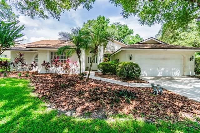15901 Ellsworth Drive, Tampa, FL 33647 (MLS #T3252950) :: Team Bohannon Keller Williams, Tampa Properties