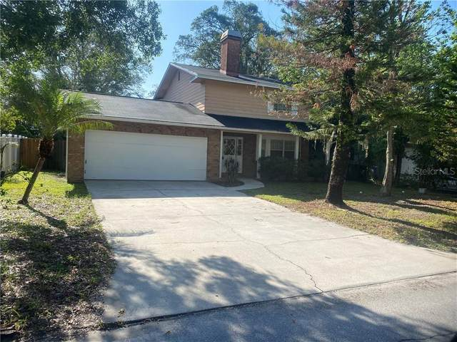10207 N Pawnee Avenue, Tampa, FL 33617 (MLS #T3252955) :: Baird Realty Group