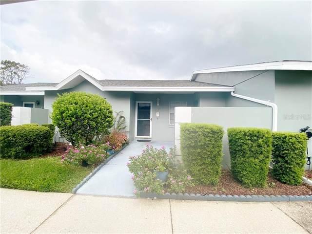 6790 Basswood Circle, Zephyrhills, FL 33542 (MLS #T3252989) :: The Heidi Schrock Team