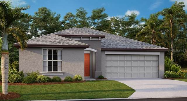 11921 Wild Daffodil Court, Riverview, FL 33579 (MLS #T3252994) :: Medway Realty