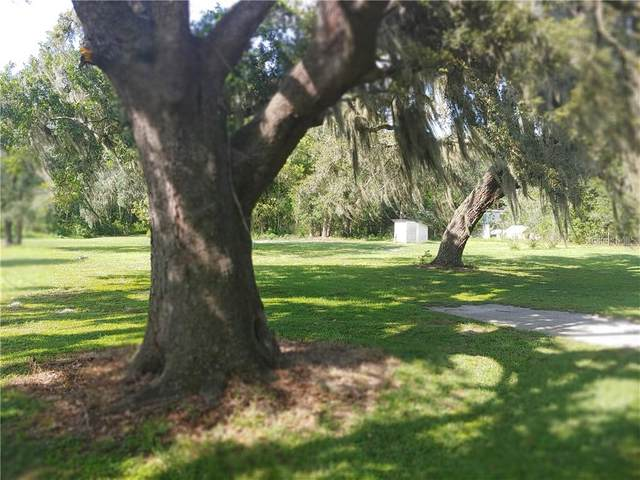 6904 Kinard Road, Plant City, FL 33565 (MLS #T3252997) :: Sarasota Home Specialists