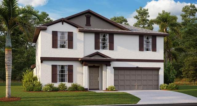 11915 Wild Daffodil Court, Riverview, FL 33579 (MLS #T3253000) :: Medway Realty