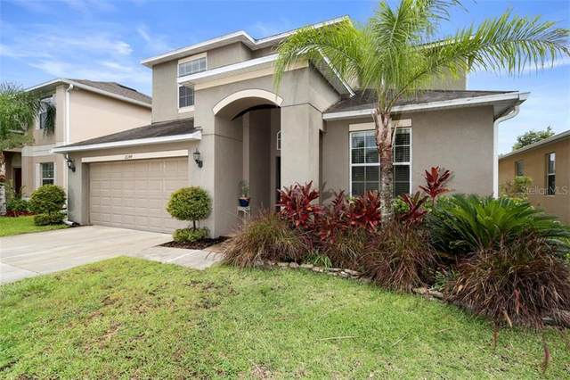 18244 Atherstone Trail, Land O Lakes, FL 34638 (MLS #T3253023) :: GO Realty