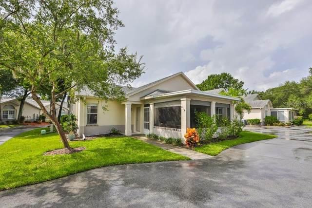 814 Silverthorn Lane, Sun City Center, FL 33573 (MLS #T3253034) :: Dalton Wade Real Estate Group