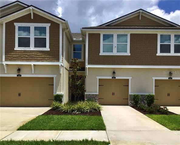 5527 Cumberland Star Court, Lutz, FL 33558 (MLS #T3253037) :: Griffin Group
