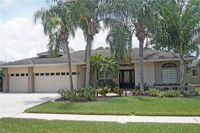 4345 Worthington Circle, Palm Harbor, FL 34685 (MLS #T3253080) :: Team Bohannon Keller Williams, Tampa Properties
