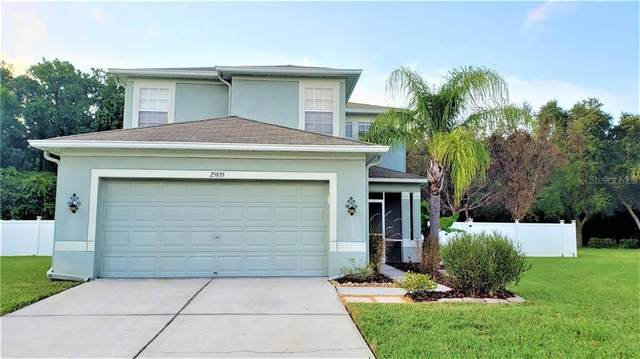 25935 Crippen Drive, Land O Lakes, FL 34639 (MLS #T3253083) :: Rabell Realty Group