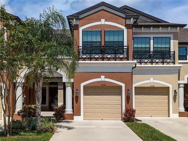 11537 Crowned Sparrow Lane, Tampa, FL 33626 (MLS #T3253092) :: Team Bohannon Keller Williams, Tampa Properties