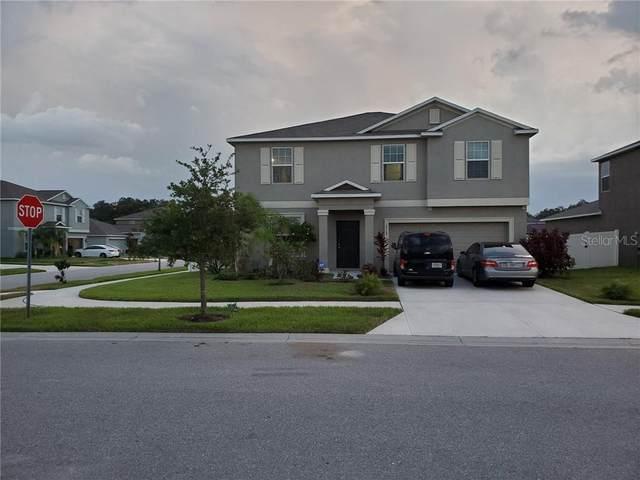 12769 Flatwood Creek Drive, Gibsonton, FL 33534 (MLS #T3253093) :: The Duncan Duo Team