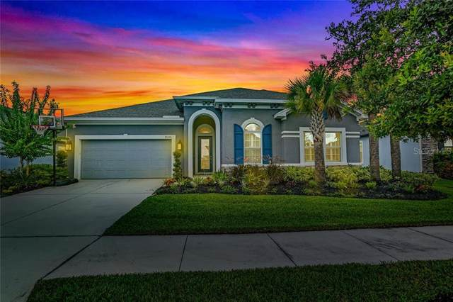 32676 Natural Bridge Road, Wesley Chapel, FL 33543 (MLS #T3253096) :: Pepine Realty