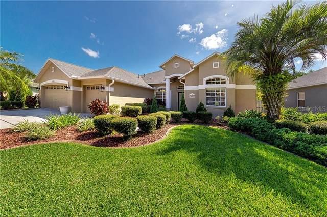 12524 Leatherleaf Drive, Tampa, FL 33626 (MLS #T3253097) :: GO Realty