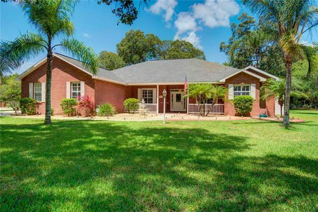 11305 Tralee Drive, Riverview, FL 33569 (MLS #T3253115) :: Team Bohannon Keller Williams, Tampa Properties