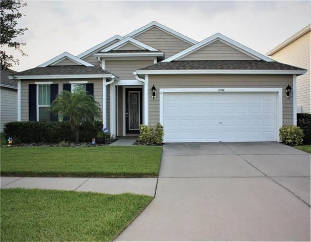 11514 Balintore Drive, Riverview, FL 33579 (MLS #T3253118) :: Team Pepka