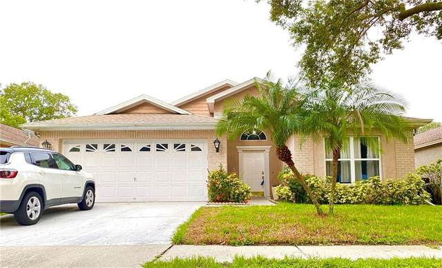 10839 Peppersong Drive, Riverview, FL 33578 (MLS #T3253126) :: Carmena and Associates Realty Group