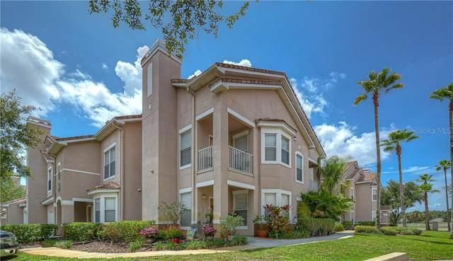 18062 Villa Creek Drive, Tampa, FL 33647 (MLS #T3253127) :: Florida Real Estate Sellers at Keller Williams Realty