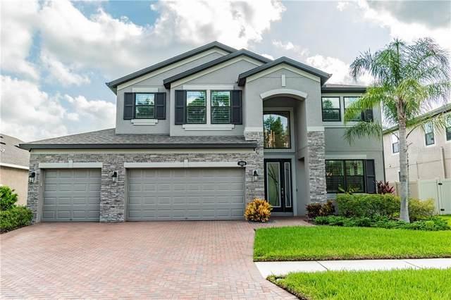 18516 Roseate Drive, Lutz, FL 33558 (MLS #T3253134) :: Team Borham at Keller Williams Realty