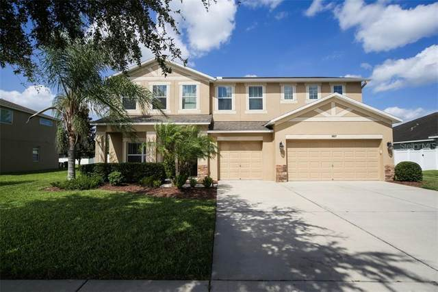 1807 Raven Manor Drive, Dover, FL 33527 (MLS #T3253142) :: Team Borham at Keller Williams Realty