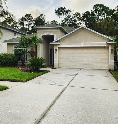12805 Killarney Court, Odessa, FL 33556 (MLS #T3253164) :: Team Bohannon Keller Williams, Tampa Properties