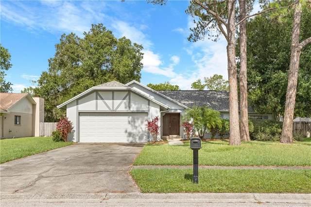 14908 Coldwater Lane, Tampa, FL 33624 (MLS #T3253172) :: Dalton Wade Real Estate Group