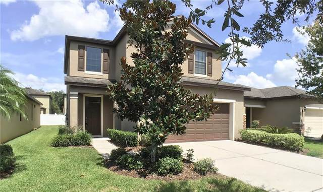 4510 Savannah Holly Place, Riverview, FL 33578 (MLS #T3253184) :: Mark and Joni Coulter | Better Homes and Gardens
