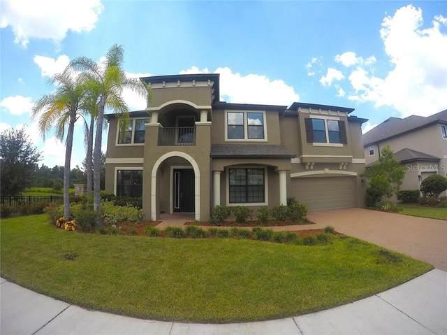 10702 Laurel Vista Way, Tampa, FL 33647 (MLS #T3253219) :: Premium Properties Real Estate Services