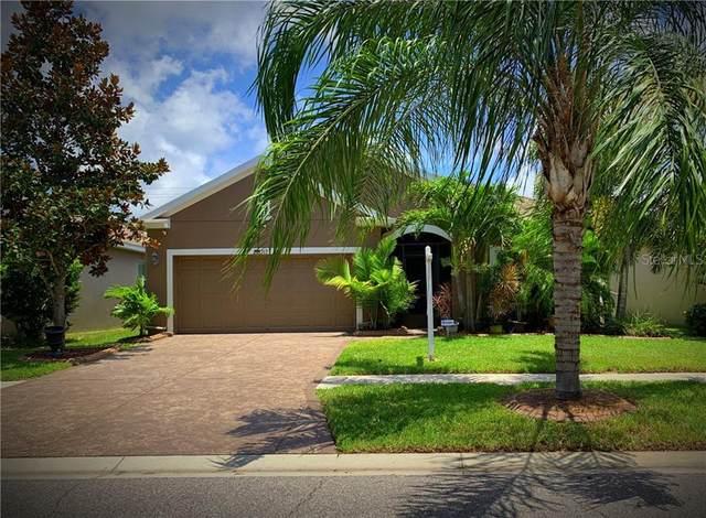 717 Fern Leaf Drive, Ruskin, FL 33570 (MLS #T3253236) :: Florida Real Estate Sellers at Keller Williams Realty