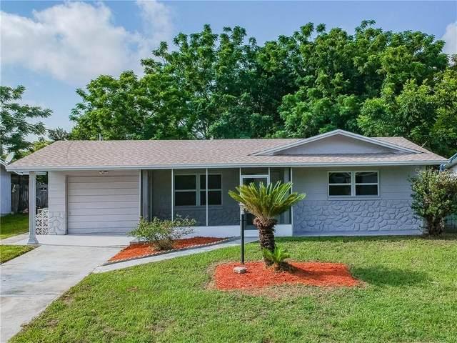 7311 Buchanan Drive, Port Richey, FL 34668 (MLS #T3253237) :: Keller Williams on the Water/Sarasota