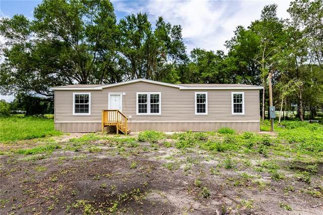 13003 Stress Free Lane, Dover, FL 33527 (MLS #T3253280) :: Team Borham at Keller Williams Realty