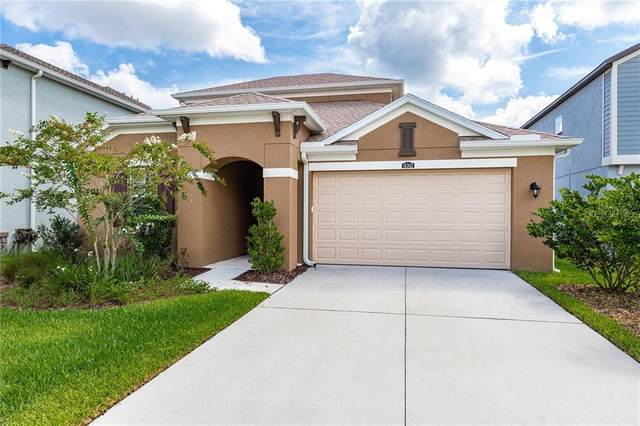 16343 Hyde Manor Drive, Tampa, FL 33647 (MLS #T3253294) :: GO Realty