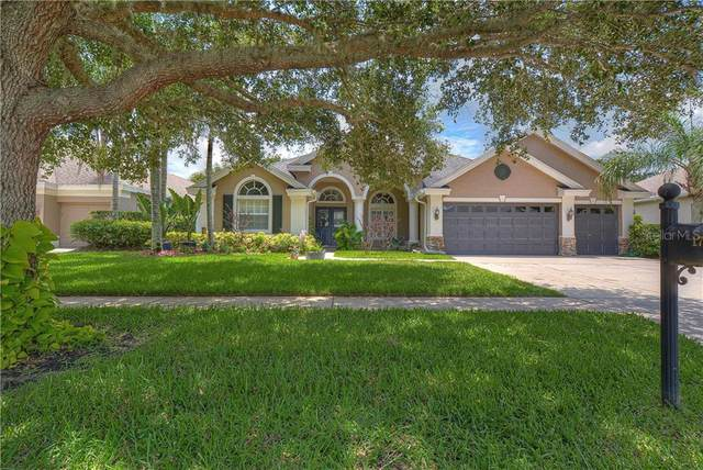 17723 Currie Ford Drive, Lutz, FL 33558 (MLS #T3253300) :: Team Borham at Keller Williams Realty