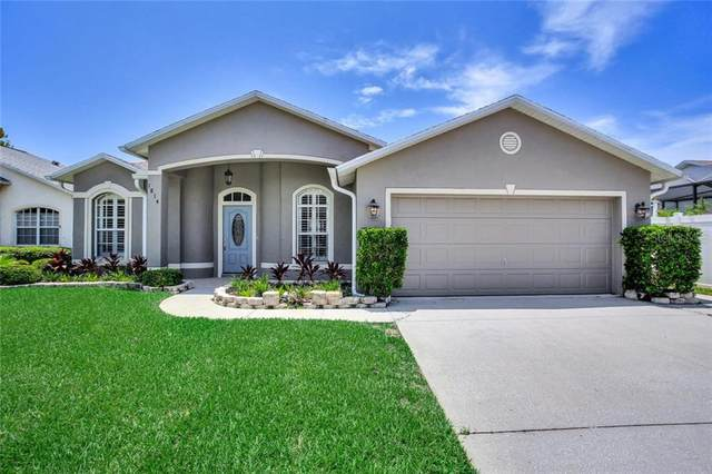 1814 Twilight Tides Street, Tarpon Springs, FL 34689 (MLS #T3253320) :: Bustamante Real Estate