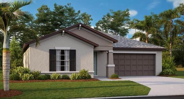 3078 Nubbin Ridge Lane, Zephyrhills, FL 33540 (MLS #T3253340) :: Keller Williams on the Water/Sarasota