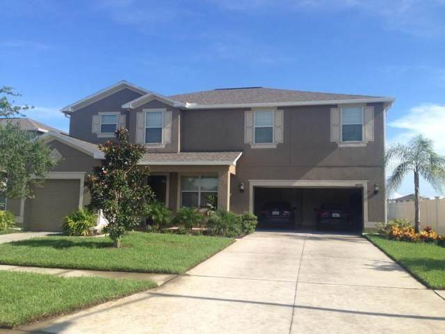 18712 Milton Keynes Court, Land O Lakes, FL 34638 (MLS #T3253351) :: Rabell Realty Group