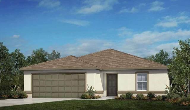 1411 Elsa Gale Lane, Valrico, FL 33594 (MLS #T3253358) :: Team Borham at Keller Williams Realty