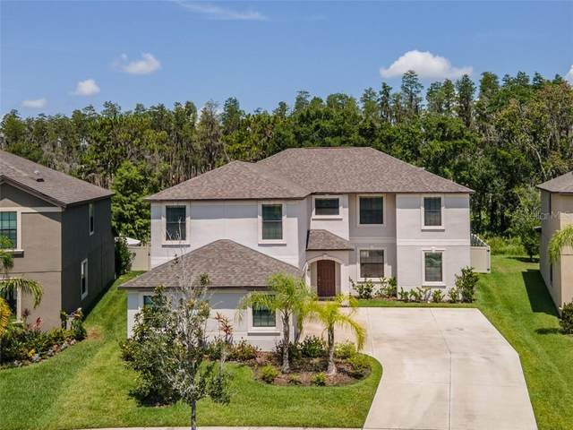 5057 Ivory Stone Drive, Wimauma, FL 33598 (MLS #T3253361) :: Team Borham at Keller Williams Realty