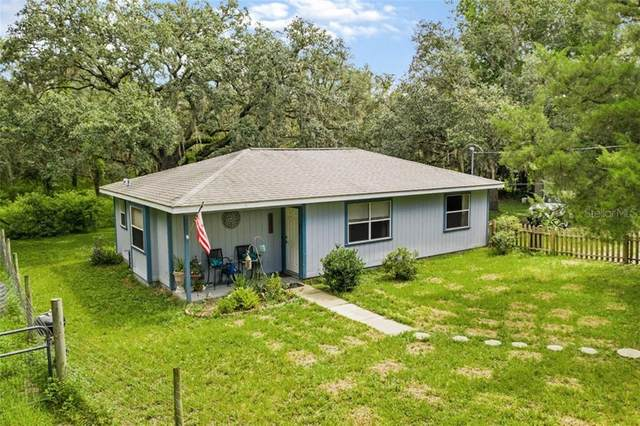 14421 Scrub Oak Lane, Brooksville, FL 34613 (MLS #T3253404) :: Alpha Equity Team