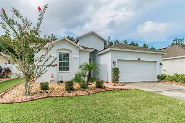 32748 Yasmine Loop, Wesley Chapel, FL 33543 (MLS #T3253417) :: Alpha Equity Team
