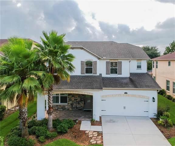 4514 Vermillion Sky Drive, Wesley Chapel, FL 33544 (MLS #T3253459) :: Cartwright Realty