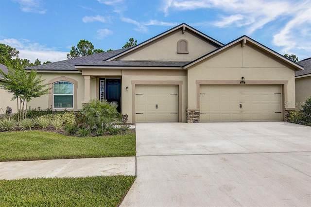 13237 Baby Belle Drive, Riverview, FL 33579 (MLS #T3253492) :: MavRealty