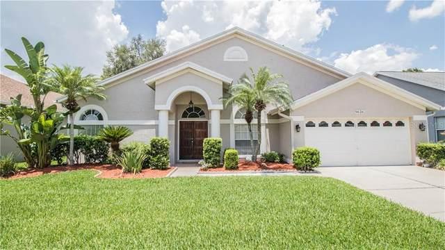 9626 Fox Hearst Road, Tampa, FL 33647 (MLS #T3253566) :: Sarasota Home Specialists