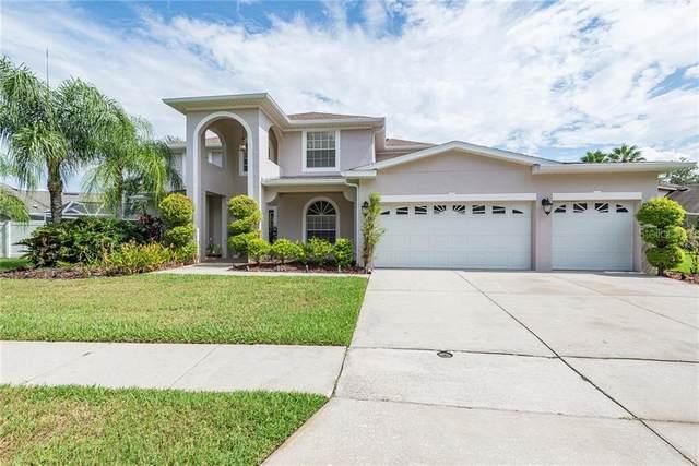 6606 Buckingham Palms Way, Tampa, FL 33647 (MLS #T3253616) :: GO Realty