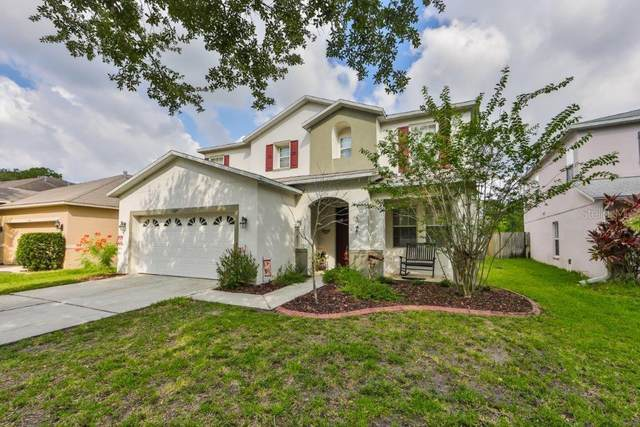 6620 Waterton Drive, Riverview, FL 33578 (MLS #T3253620) :: Team Bohannon Keller Williams, Tampa Properties