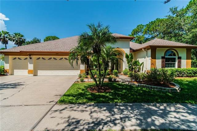 19212 Autumn Woods Avenue, Tampa, FL 33647 (MLS #T3253673) :: GO Realty