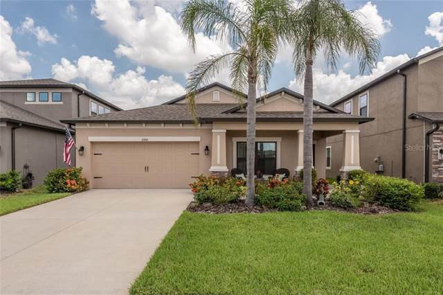 11442 Amapola Bloom Court, Riverview, FL 33579 (MLS #T3253688) :: Team Borham at Keller Williams Realty