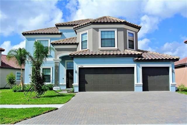 11906 Cinnamon Fern Drive, Riverview, FL 33579 (MLS #T3253692) :: Lockhart & Walseth Team, Realtors