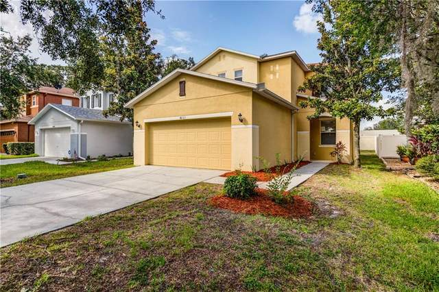4633 White Bay Circle, Wesley Chapel, FL 33545 (MLS #T3253695) :: Cartwright Realty