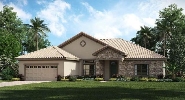 1451 Mickelson Court, Davenport, FL 33896 (MLS #T3253733) :: Zarghami Group